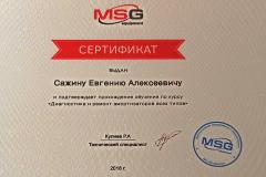 Сертификат MSG